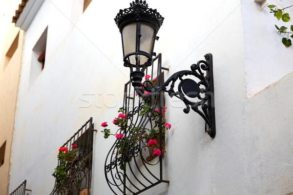 Fehér homlokzat ablak virágok edény épület Stock fotó © lunamarina