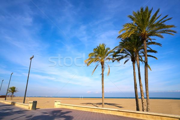 Valência la praia Espanha palmeiras água Foto stock © lunamarina