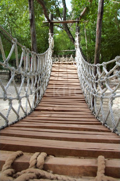 Adventure wooden rope jungle suspension bridge Stock photo © lunamarina