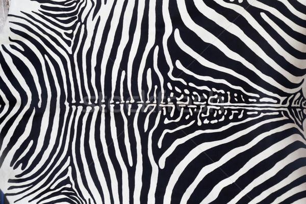ストックフォト: シマウマ · 革 · 皮膚 · テクスチャ · 描いた · 抽象的な