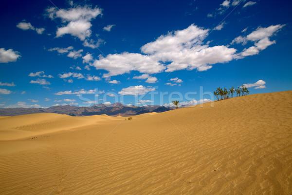 Deserto morte valle parco California cielo Foto d'archivio © lunamarina