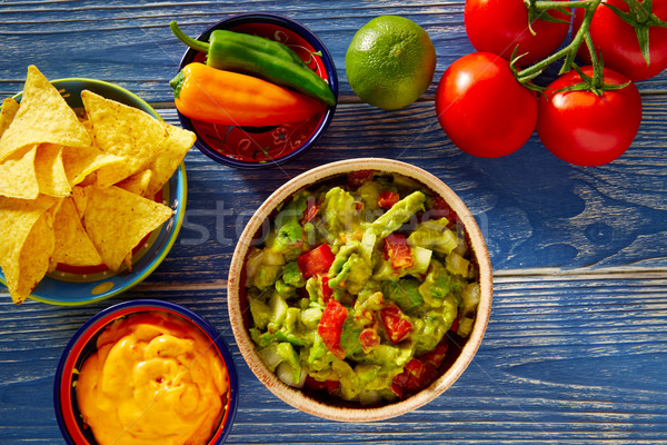 Mexican food nachos guacamole pico de gallo cheese Stock photo © lunamarina