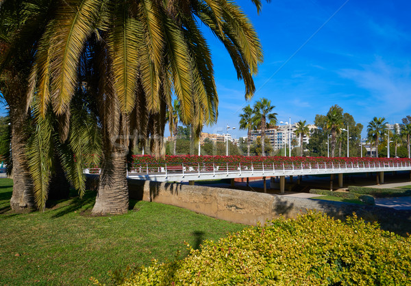 Valencia virágok híd Spanyolország épület tájkép Stock fotó © lunamarina