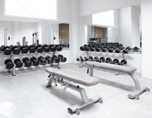 Stock fotó: Fitnessz · klub · súlyzós · edzés · felszerlés · tornaterem · modern