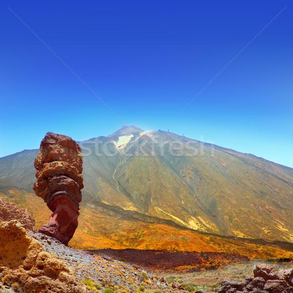 公園 テネリフェ島 カナリア諸島 空 自然 山 ストックフォト © lunamarina