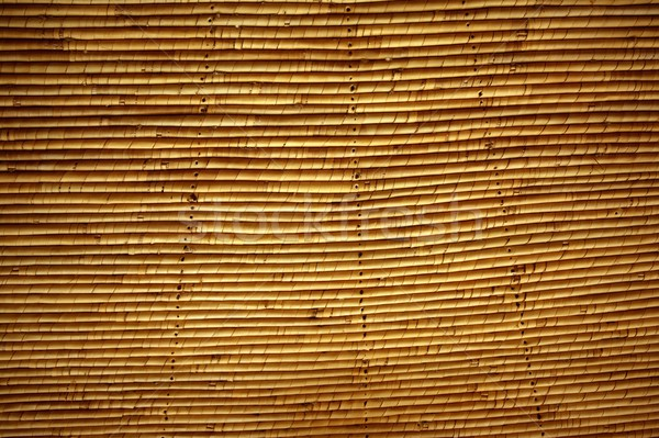 Cane roof traditional african ceiling system Stock photo © lunamarina