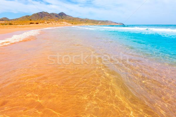 Calblanque beach Park Manga Mar Menor Murcia Stock photo © lunamarina