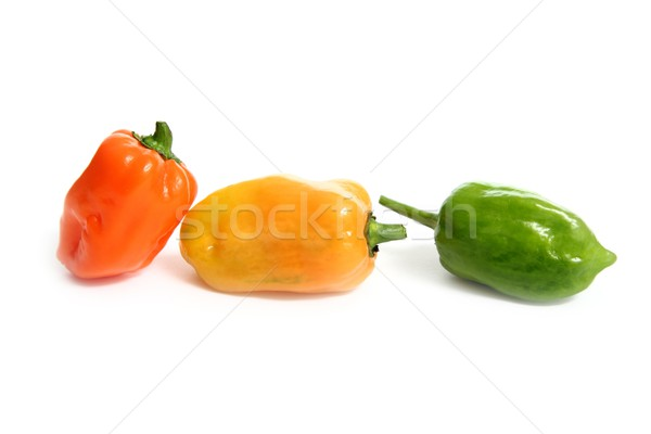 Habanero Capsicum chili hottest pepper in the world from Mexico Stock photo © lunamarina