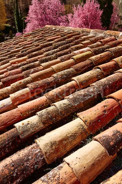 Arabic roof tiles pattern texture in Teruel Spain Stock photo © lunamarina