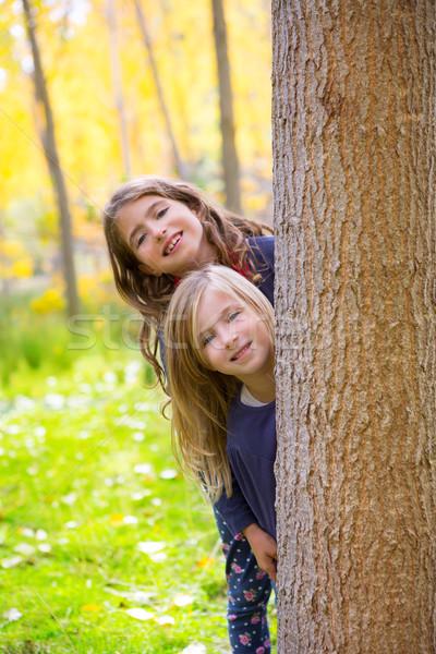 Jesienią siostra dziecko dziewcząt gry lasu Zdjęcia stock © lunamarina