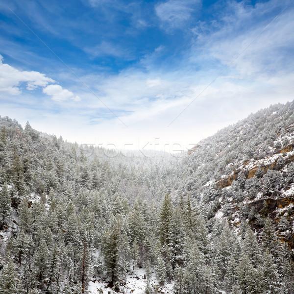 Nevada USA spring snow in the mountains Stock photo © lunamarina