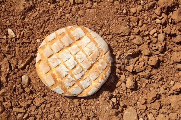 Bread bun round on red clay soil background Stock photo © lunamarina