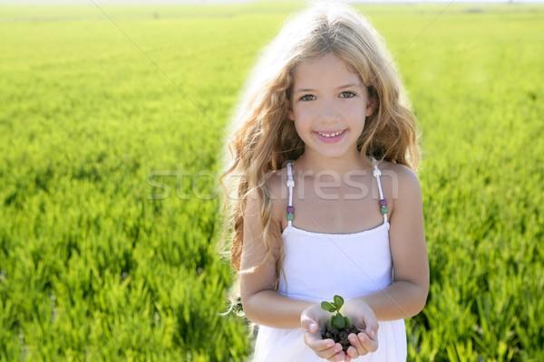 Stok fotoğraf: Bitki · büyüyen · küçük · kız · eller · açık