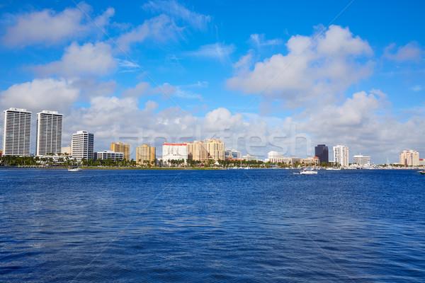 Palma praia linha do horizonte Flórida EUA árvore Foto stock © lunamarina