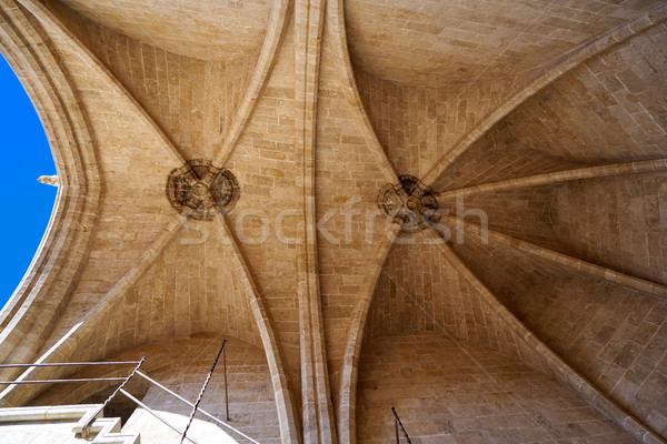 Torres de Serrano towers dome in Valencia Stock photo © lunamarina
