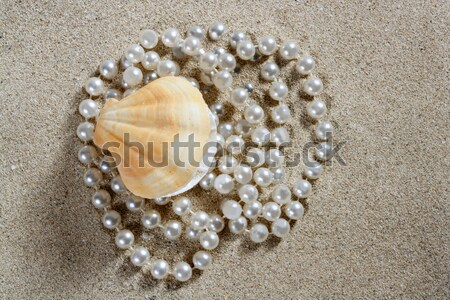 beach white sand pearl shell clam macro Stock photo © lunamarina