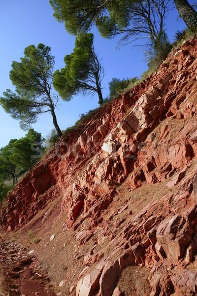 Piros kő hegy oldal fenyőfa fák Stock fotó © lunamarina
