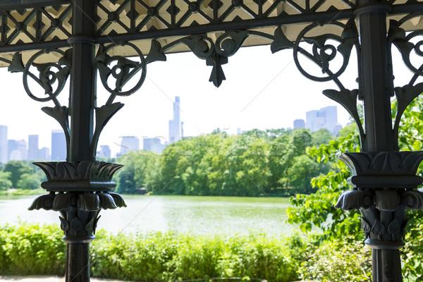 Central Park Manhattan New York meer hemel stad Stockfoto © lunamarina