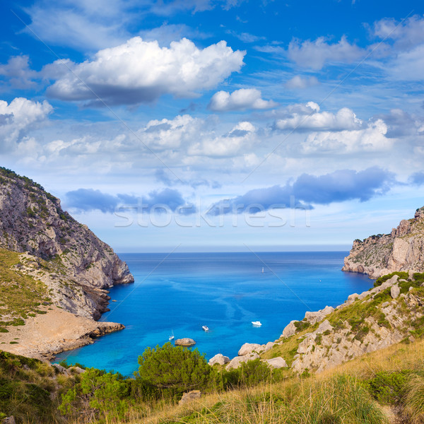 Majorca Cala Figuera beach of Formentor Mallorca Stock photo © lunamarina