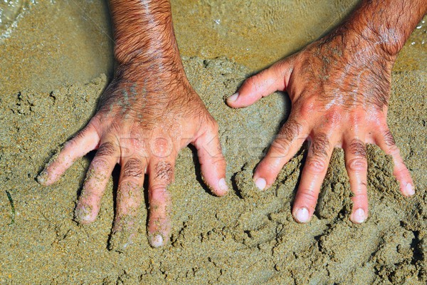 Haarig Mann Hände Strandsand sonnig Sommer Stock foto © lunamarina