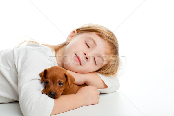 blond kid girl sleeping with mini pinscher pet Stock photo © lunamarina