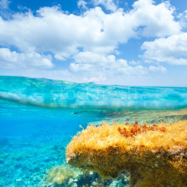 Ibiza Formentera underwater waterline blue sky Stock photo © lunamarina