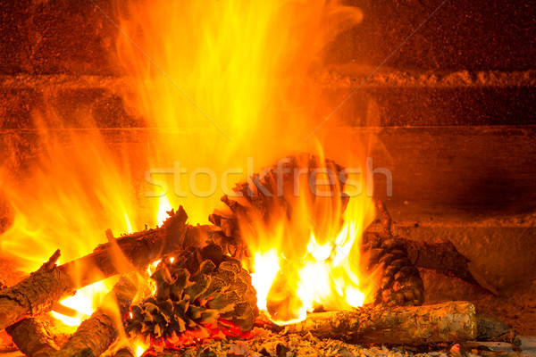 burning firewood in chimney with pine cones Stock photo © lunamarina
