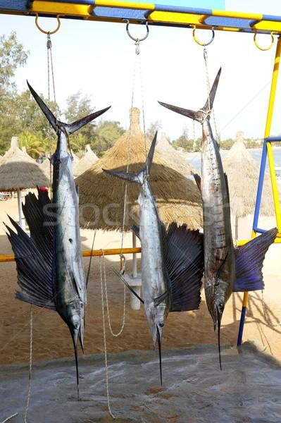 Asılı balık tutma ganimet göz spor Stok fotoğraf © lunamarina
