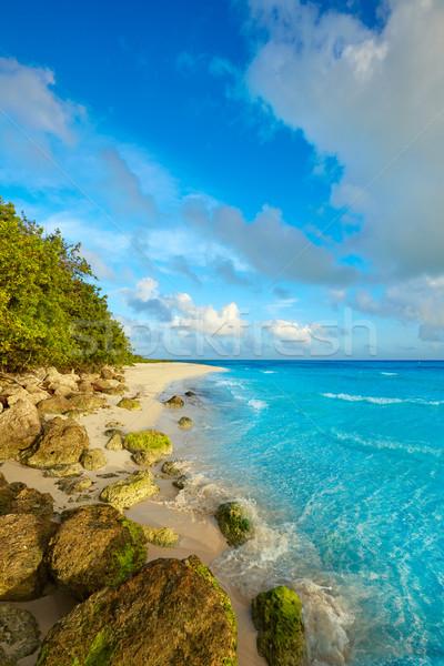 Floride touches plage parc USA ciel Photo stock © lunamarina