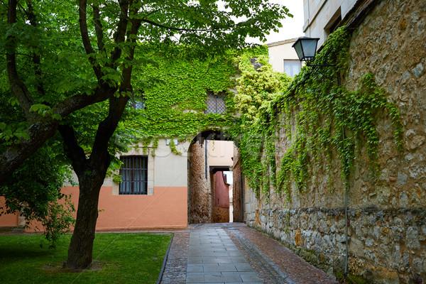 Zamora Calle Troncoso street arch Spain Stock photo © lunamarina