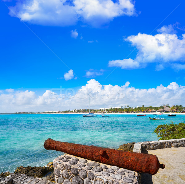 Akumal beach rusted canon in Riviera Maya Stock photo © lunamarina