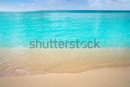 Grzech Karaibów turkus morza plaży brzegu Zdjęcia stock © lunamarina
