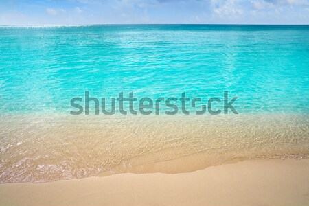 Pecado caribbean turquesa mar praia costa Foto stock © lunamarina