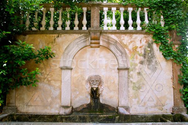 Lion stone sculpture fountain in Son Marroig at Deia Stock photo © lunamarina