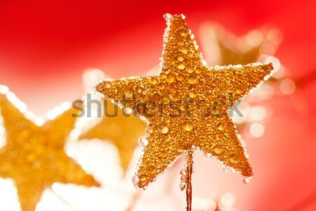 christmas golden drops star in red Stock photo © lunamarina