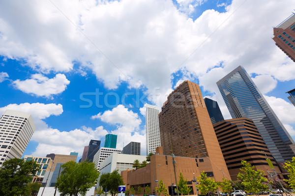 Houston ufuk çizgisi Cityscape Teksas gökyüzü manzara Stok fotoğraf © lunamarina