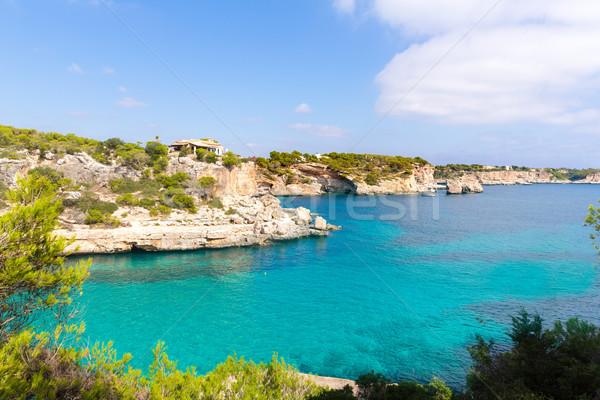 Praia mallorca ilha Espanha natureza paisagem Foto stock © lunamarina