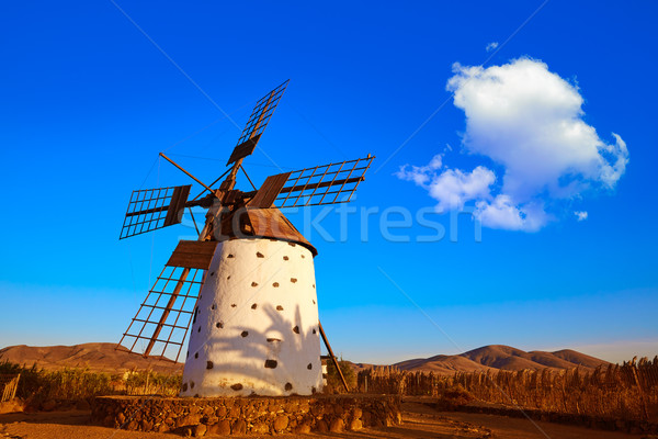 Windmill El Cotillo Fuerteventura Canary Islands Stock photo © lunamarina