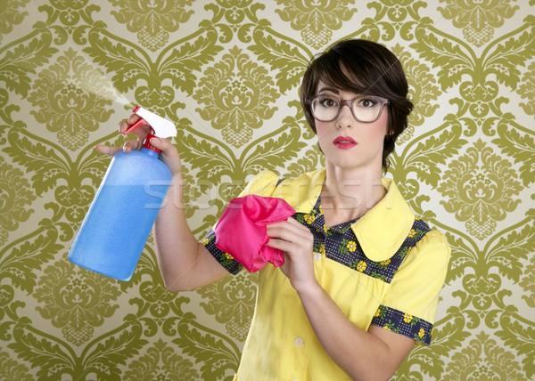 Háziasszony stréber retro takarítás házimunka felszerlés Stock fotó © lunamarina