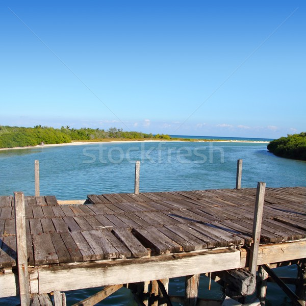 aged tropical wood bridge in Sian Kaan Tulum Stock photo © lunamarina