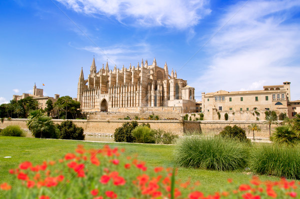Majorca Cathedral and Almudaina from red flowers garden Stock photo © lunamarina