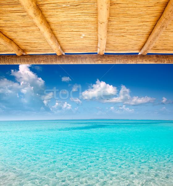 Tropikalnych doskonały plaży wody widoku Zdjęcia stock © lunamarina
