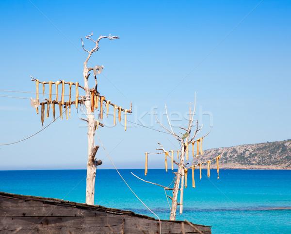 Gedroogd vis typisch gezouten voedsel middellandse zee Stockfoto © lunamarina