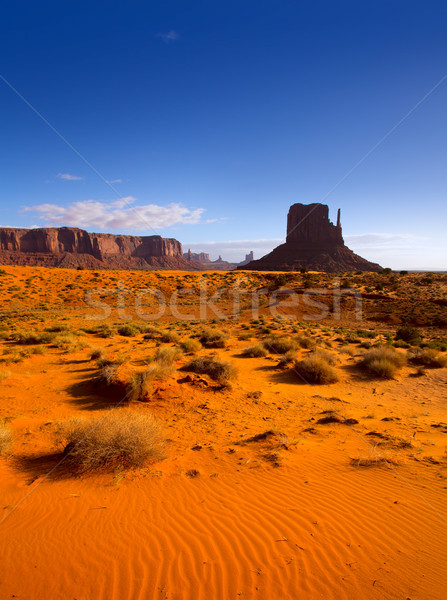 Stock photo: Monument West Mitten Butte in morning Utah