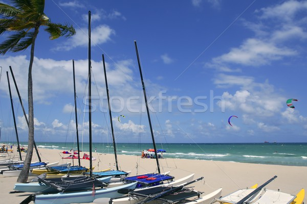 Catamarán playa Florida cielo azul cielo Foto stock © lunamarina
