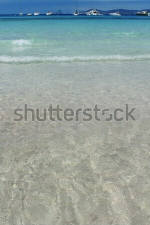Illetes Formentera beach turquoise mediterranean Stock photo © lunamarina
