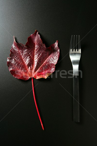Metaphor, healthy diet low calories colorful vegetarian leaf meal Stock photo © lunamarina