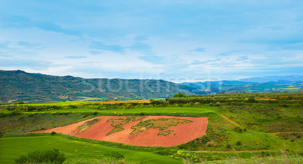 Way of Saint James world map in grass Cirauqui Stock photo © lunamarina