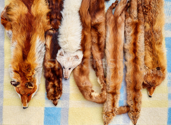 Fox real fur scarves at outdoor market in a row Stock photo © lunamarina