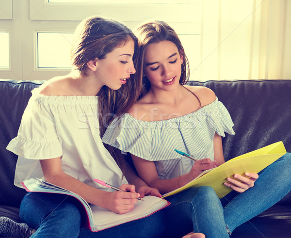 Melhor amigo meninas estudar lição de casa casa sofá Foto stock © lunamarina